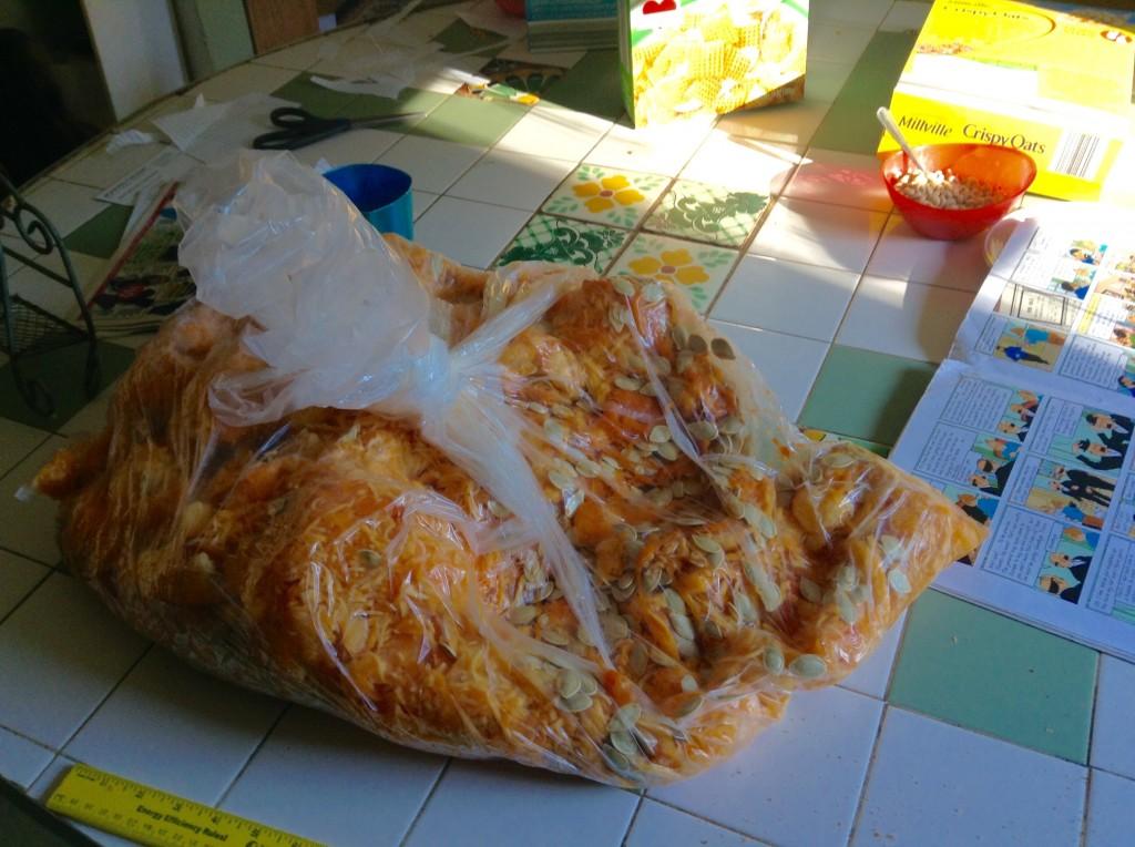 food blog pumpkin guts