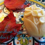 Robin's Handmade Goatmilk Soap! 18 new varieties