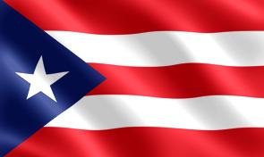 Rushmore Rose USA American Flag  amazoncom