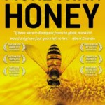 More than Honey: new doc seeks answer for why the honey bees keep dying