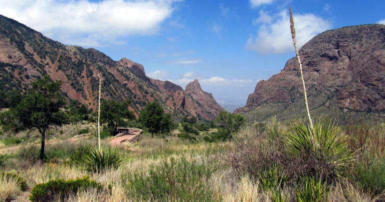 big bend national park mature personals Big bend chat offers the world all t he insight to the big bend region, including big bend national park to gain full access and get the most out of big bend.