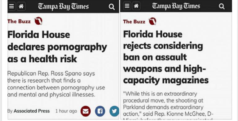 Florida House Refuses To Debate Guns But Declares Porn A Health Risk  (Image via Facebook)
