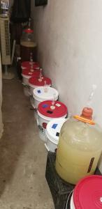 Fermentation at Lammas