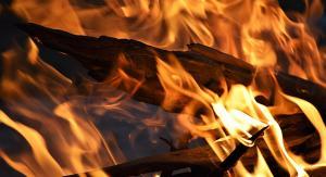 treloar fire