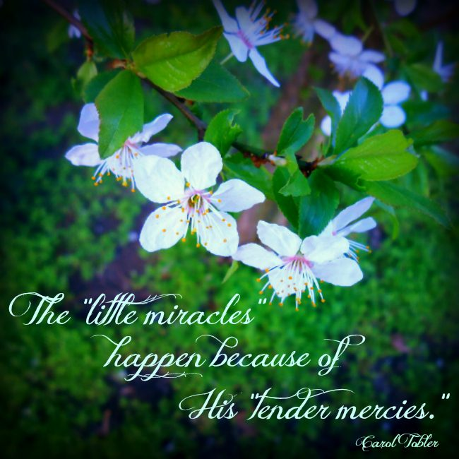 The little miracles happen because of His tender mercies