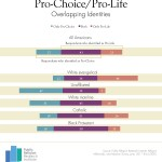 What do the purple people want in PRRI's abortion poll?