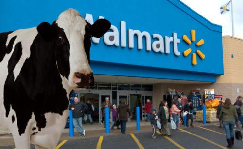 WalmartCow22
