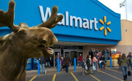 Walmart.moose