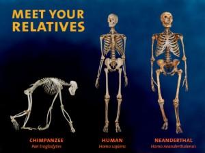 Relatives