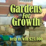Many thanks to our friends who voted for Englewood's Garden Project…