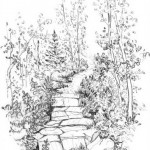 path1-1