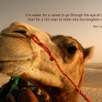 Your Money or Your Life — On Camels and Needles