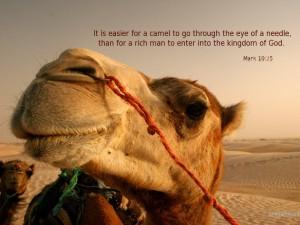 Camel_Thro_Needles_Eye