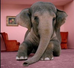 elephant-living-room1