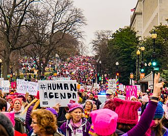 Ten Reasons Why the Women's March Will Come to Nothing