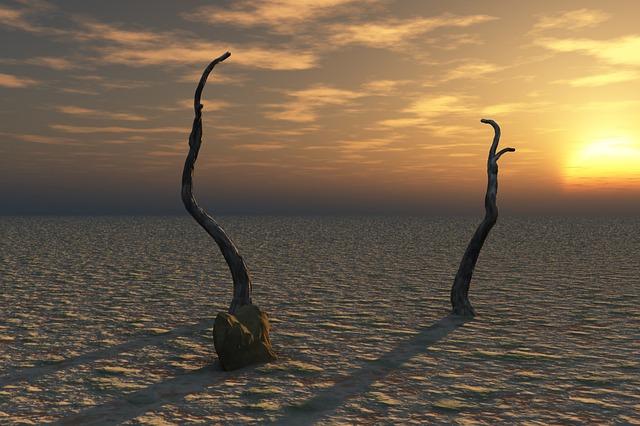 Lent Reveals The Desert