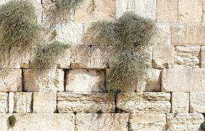 jerusalem-1328645_640