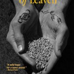 The Secrets of Leaven: A Q&A with Author Todd Wynward