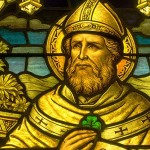 Saint Patrick, Druids, and the Snakes: The Truth is in the Middle