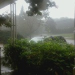 The Summer's Darkling Rain