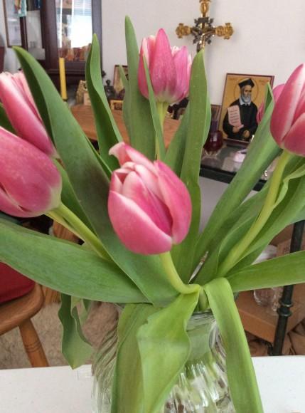 Happy Springtime! (My image)
