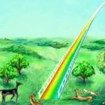 "In Defense of The ""Rainbow Bridge"""