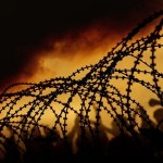 Border wire