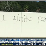 Anti-White Hate and BLM Graffiti Found In Florida