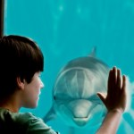 "Dolphin Tale: Making of ""A True Movie"""