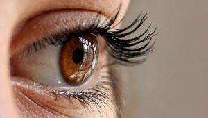 Leah's Eyes in Genesis