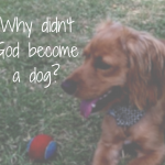 Why Didn't God Become a Dog?