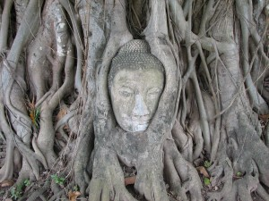 1280px-Ayutthaya_buddha_2