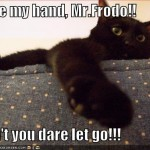 takemyhandmrfrodo(cat)
