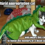 cultural appropriation cat