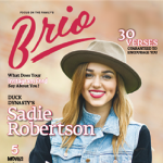 Some Considerations Before Subscribing to Brio 2.0