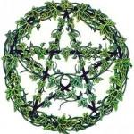 pentacle_ivy[1]