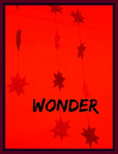 Starz wonder.jpg