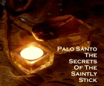 Palo Santo- The Secrets of this Saintly Stick