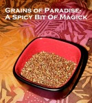 Grains of Paradise: A Spicy Bit of Magick