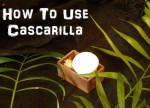 How to Use Cascarilla