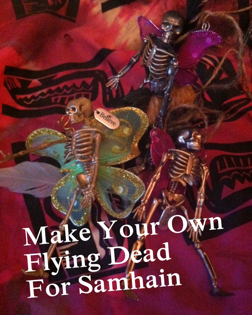 Flying Dead photo by Lilith Dorsey. All rights reserved.