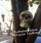 #31DaysofSamhain Instagram Challenge