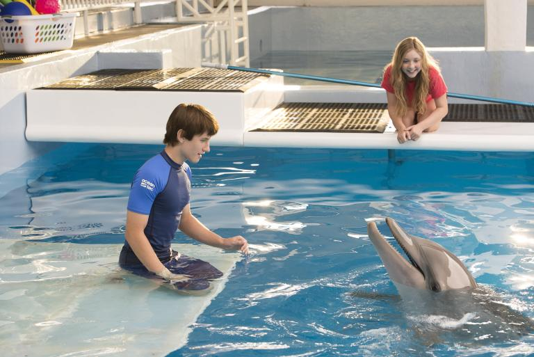 Dolphin Tale 2: Finding a Little Hope