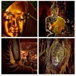 Buddha's Enlightenment: The Root of Zen