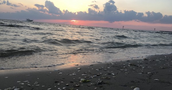 Where land, sea and sky meet, and the flaming sun descends to touch the line between. This is liminal perfection. ~photo by Heron Michelle