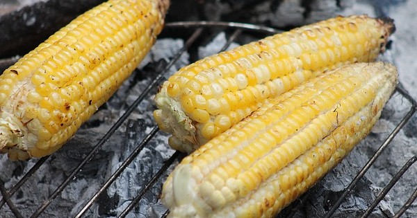 Roasted Corn of Integration CC0 Public Domain - Pixabay