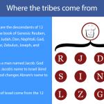 12 tribe