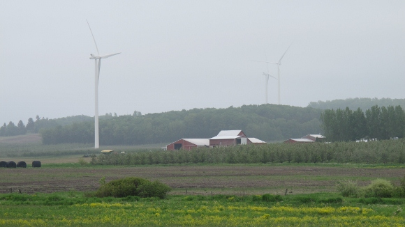 Wind turbines erected by the Lake Winds Energy Park on rural landscape in Mason County, MIchigan, near Lake Michigan. Photo by Barbara Newhall