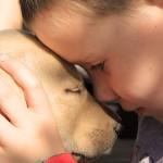 Aidan and his Labrador