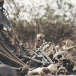 Beyond Engagement: Will These Bones Live? [Daniel Karistai]